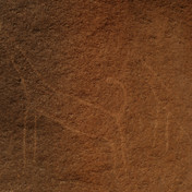 Giraffes, leopards, camels, ibex & other animals are etched on Jebel Gattar's rocks. Around 10,000 years ago the Red Sea Mountains had a much wetter climate. These drawings would have been made by nomads who lived in a world more like the savanna grasslands of deep Africa. The climate began to change at least 5000 years ago & these mountains would have looked much as they do now by the time of Egypt's first Pharaohs. These drawings underline the powerful changeability of our natural world & record a contrasting nomadic experience in these mountains.