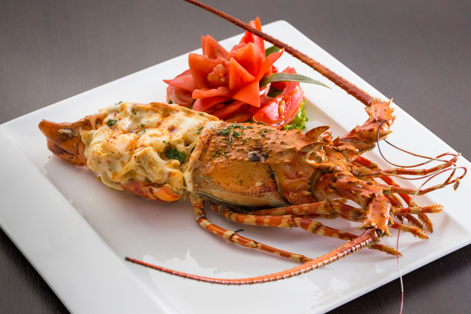 LOBSTER THERMIDOR(2)