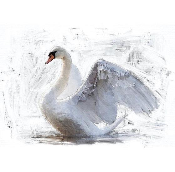 White Swan - Decoupage