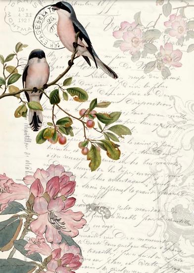 Spring Bird Ephemera Decoupage Paper