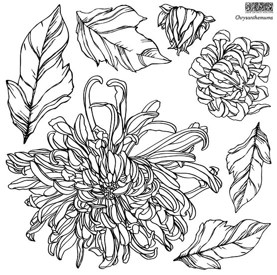 Chrysanthemums Stamps (set of 2) available  for pre-order