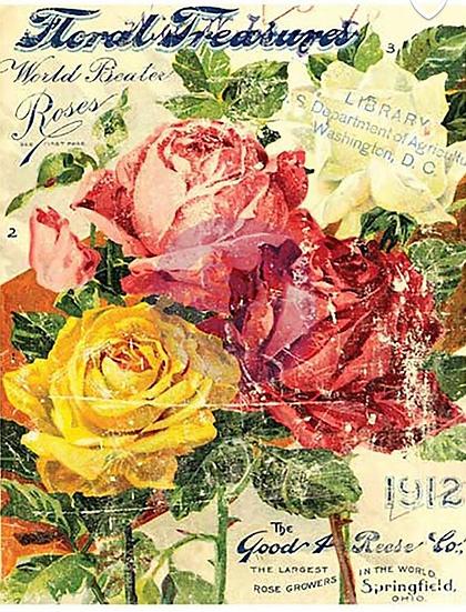Floral Treasures IOD Transfer Large