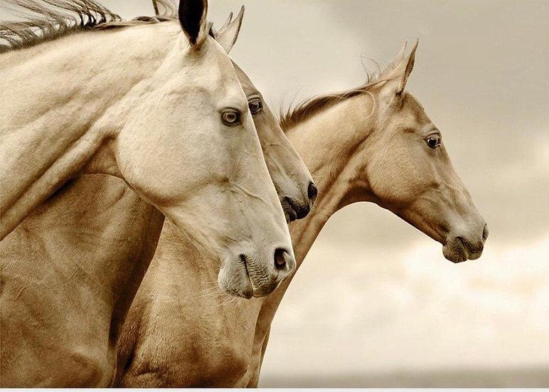 Sepia Horses - Decoupage