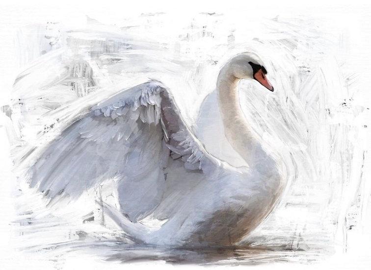 White Swan Decoupage (Reversed)