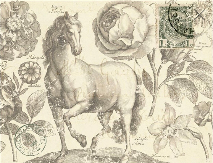Botanical Equine Decoupage Paper
