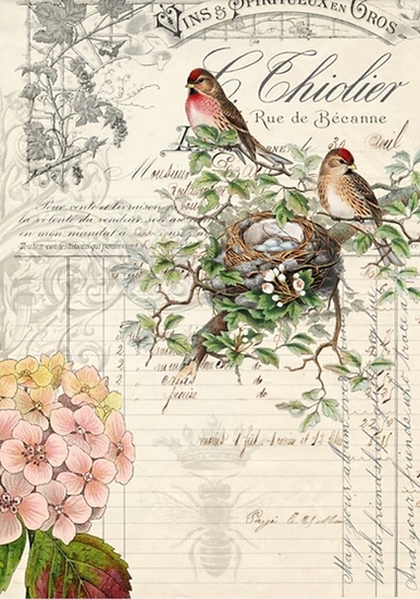 Bird Ephemera Decoupage Paper