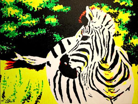 Free Zebra in Field