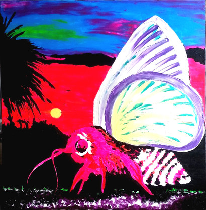 Moth Over A Tropical Sunset