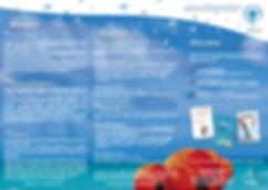 Triptyque access verso VD site.jpg