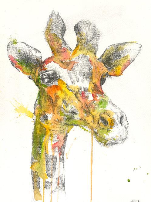 Giraffee - signed print