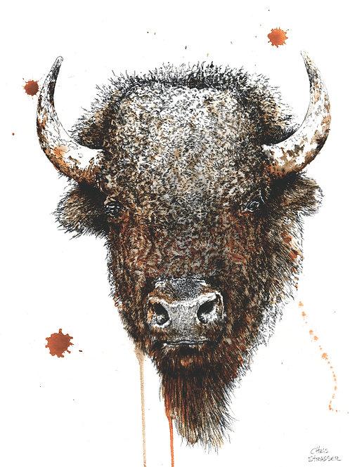 Bison Mix