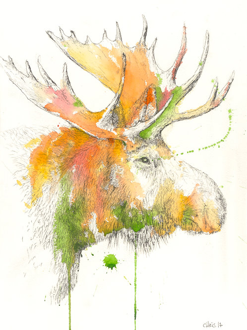 Moose_01 - signed print