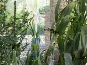 Urban Reflections (still) 11.15min loop projection Sidewalk Gallery 1 Ponsonby Rd Grey Lynn Tāmaki Makaurau Auckland