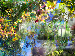 Canopy, (detail) 800x1200mm limited edition digital print