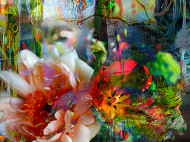 Florid #3, 2015  Archival pigment print on fine art paper, 280 x 280mm