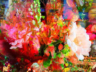 Florid #2, 2015  Archival pigment print on fine art paper, 280 x 280mm