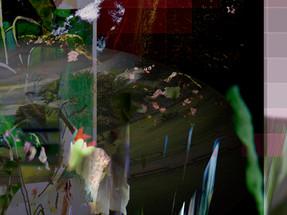 Outlook 21.06.16  Digital Collage