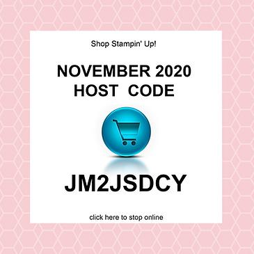 November 2020 HOST CODE.png