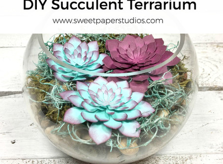 DIY Succulent Terrarium