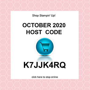 October 2020 Host Code.png