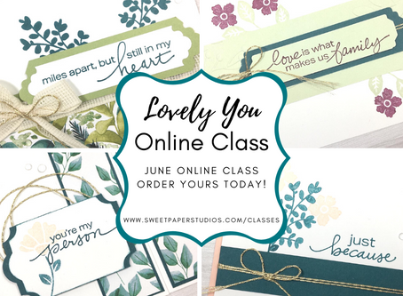 Lovely You Online Class | Ships Anywhere in Canada!