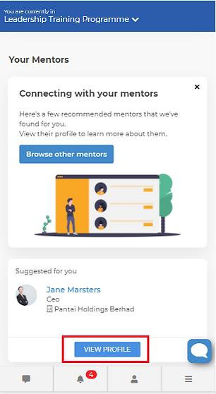 Image 10 Mentorship Dashboard - View Pro