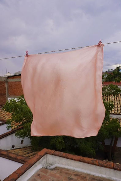 peach coloured silk scarf on washing line on roof by Nia Thomas