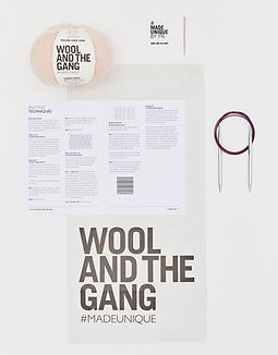 diy knitting kit - wool and the gang
