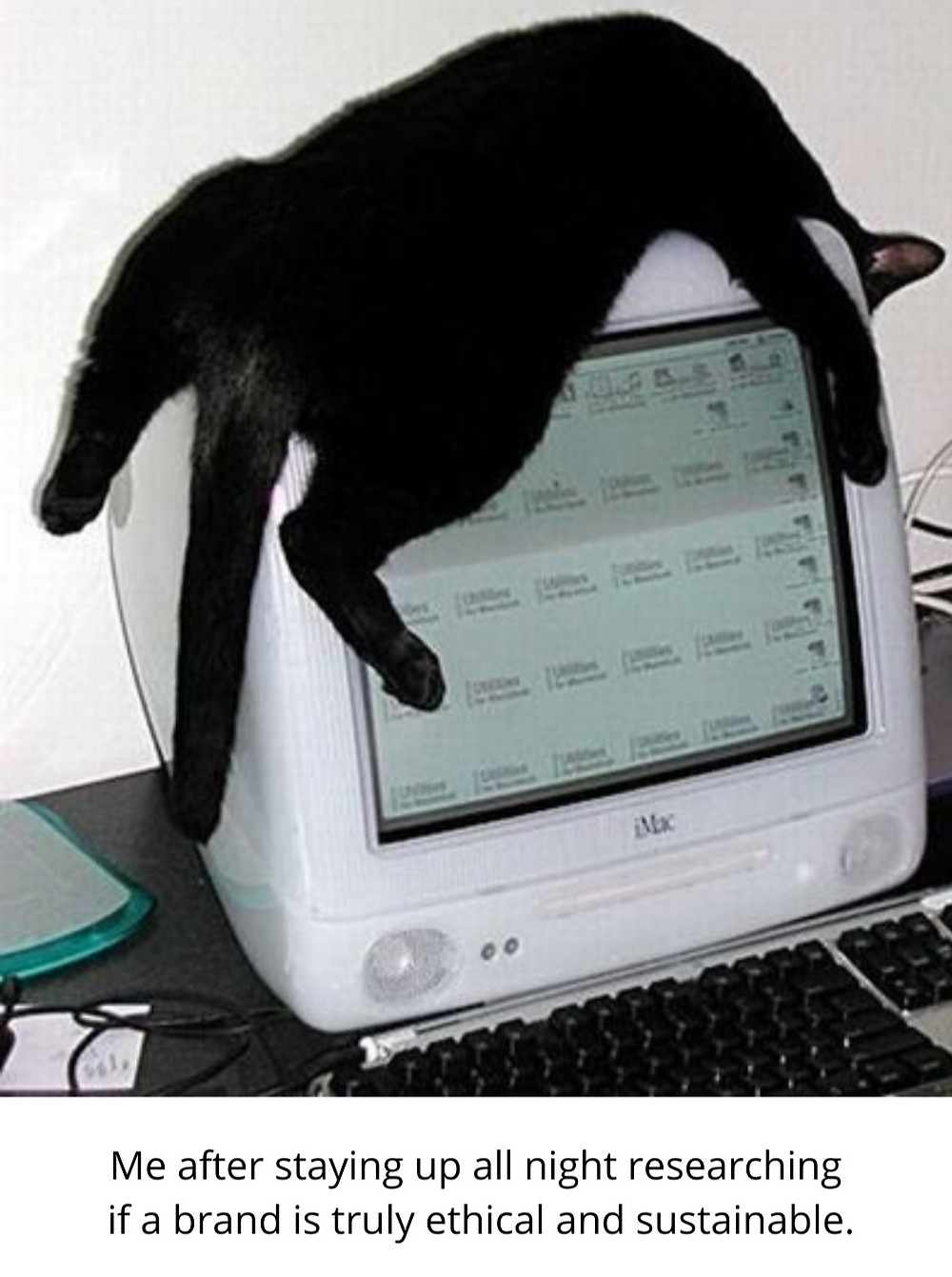 cat laying on top of a vintage computer sustainable fashion meme