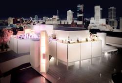 Art Gallery WA Elevate 2020