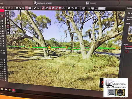 Walebing Scar Tree - A Heritage Story