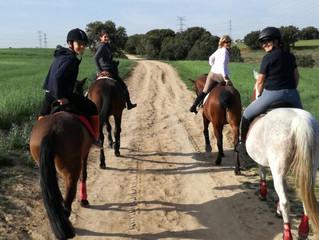¿Por qué no disfrutar de un fantástico día a caballo en primavera?