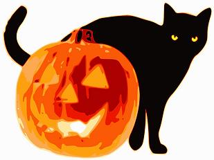 halloween-cat and pumpkin.png