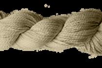 Fossil Sami