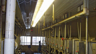 Agricultural milking station warmed with tube heaters