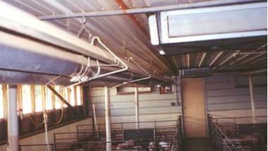 Tube Heaters in Hog Building