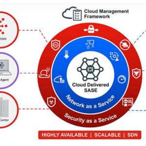 Borde de servicio de acceso seguro (SASE)