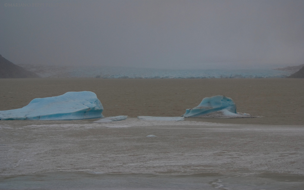 Glaciar Nef, Aysen