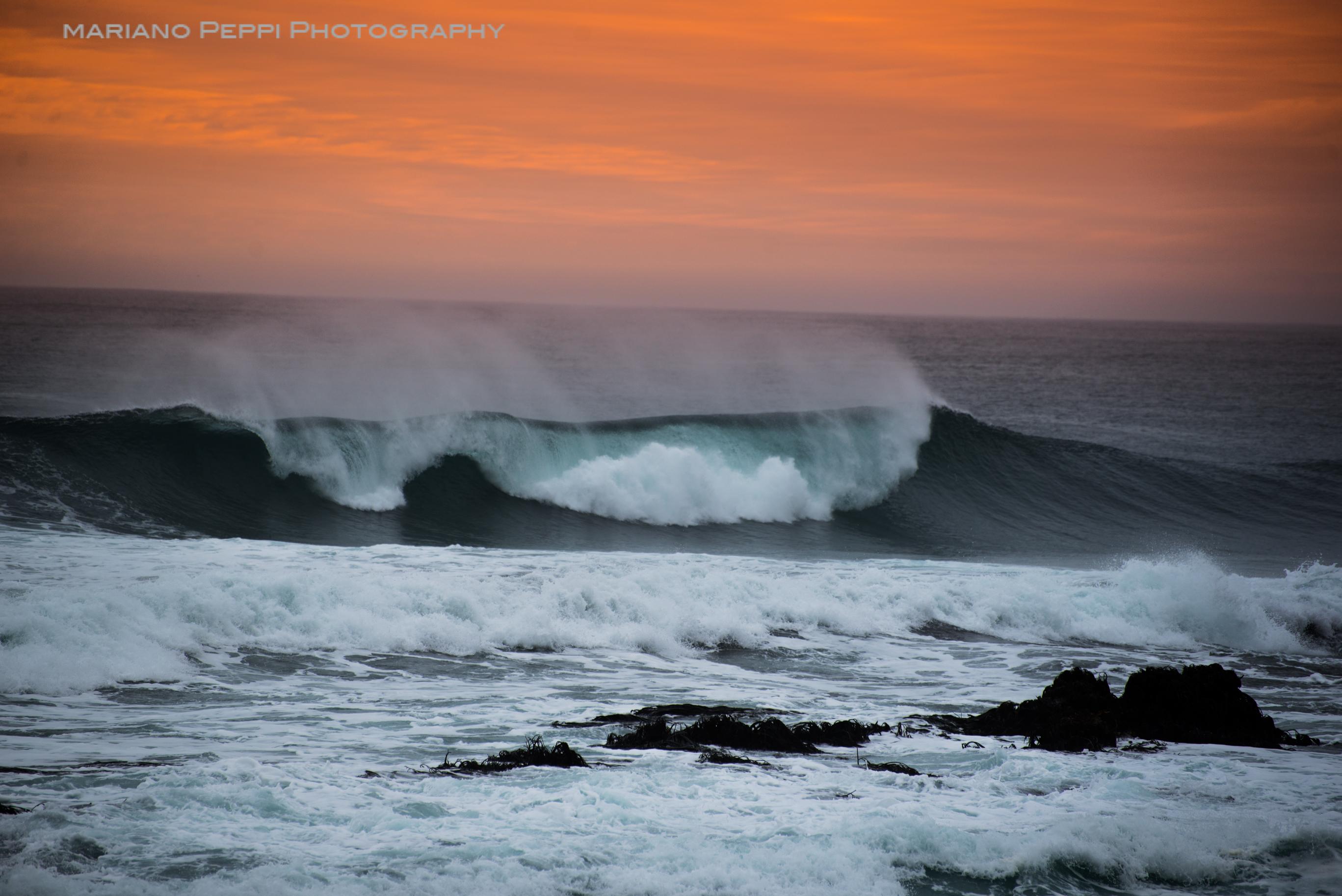 Surfing Pichilemu