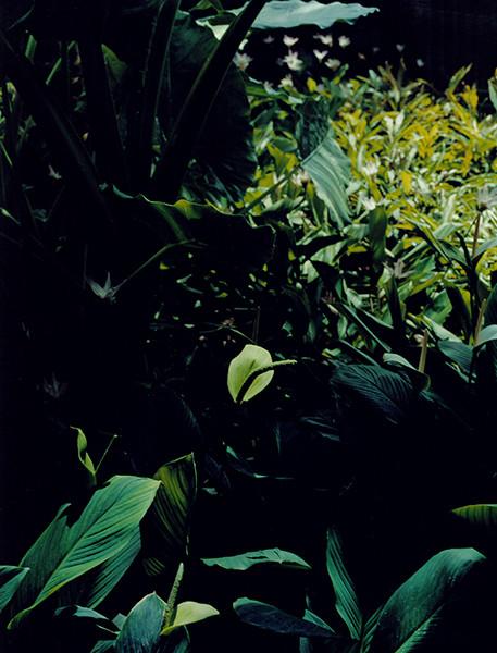 f03-07.jpg