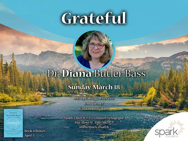 2018-03-18 DIANA BUTLER BASS _ SPARK.jpg