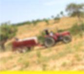Produção Agrícola.jpg