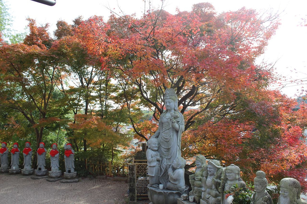 こがえる寺と紅葉