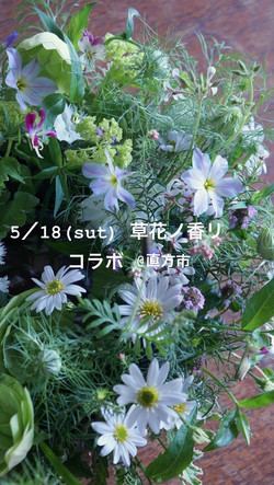 草花ノ香リ&クリパルヨガ