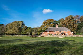 A photograph of our New Forest national park Bed and Breakfast located on open forest with wild ponies grazing in the foreground