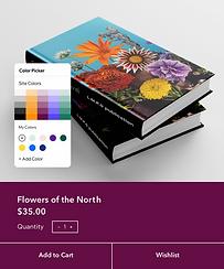 O site de uma editora sendo editado e mostrando recursos como paletas de cores, elementos visuais, e mais.