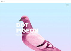 Dot Pigeon | Арт-директор