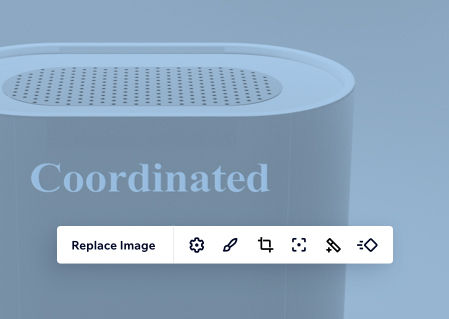 A pale blue speaker image with an editing panel open in Editor X