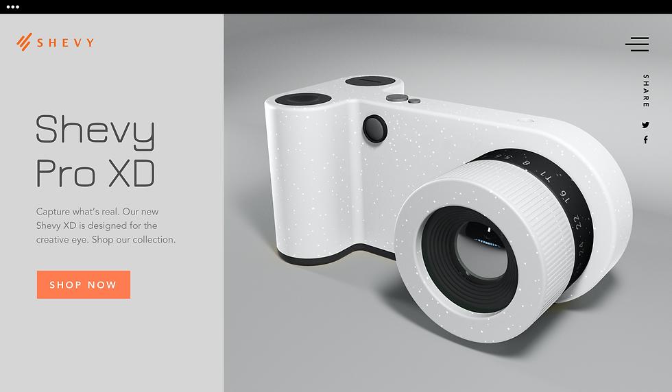 Домашняя страница сайта компании, производящей цифровые камеры.