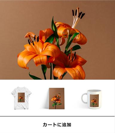 Tシャツ、マグカップ、印刷画など、ブランド仕様の商品を販売するネットショップ。